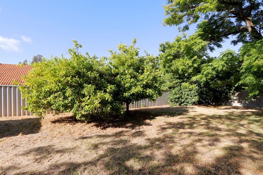 https://propertyphotos.vaultre.com.au/835/3989054__1578460061-21411-IMG0233.jpg